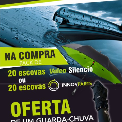 CAMPANHA ESCOVAS - INNOVPARTS & VALEO